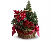 Tannenbaum Basket in New York NY, Solim Flower