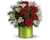 Teleflora's Christmas Cheer Bouquet in Attalla AL, Ferguson Florist, Inc.