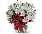 Let It Snow in Waxahachie TX, Eubank Florist & Gifts