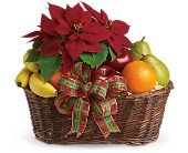 Fruit and Poinsettia Basket in Westport CT, Old Greenwich Flower Shop