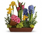Spring Favorites in Galion OH, Flower Cart Florist