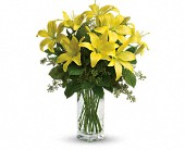 Teleflora's Lily Sunshine<br><font color=red>Also available in Orange, Pink, and White.</font>