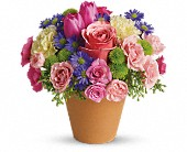 Winnipeg Flowers - Spring Sonata - Hi-Way Florists, Ltd.