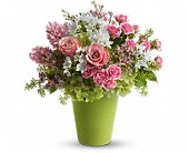 Enchanted Blooms in Dallas TX, Dallas House of Flowers  800-873-0917