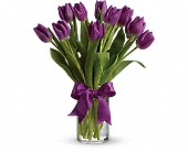 Passionate Purple TulipsColors may vary due to availability in Charleston IL, Noble Flower Shop