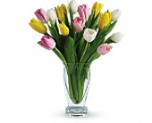 Teleflora's Tulip Treasure in Amherst NY, The Trillium's Courtyard Florist