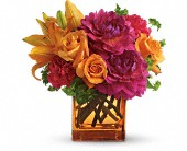 Teleflora's Summer Chic in Erie PA, Allburn Florist