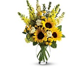 Here Comes The Sun by Teleflora in Seattle WA, Melrose Florist