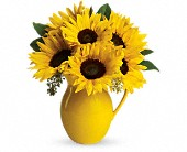 Teleflora's Sunny Day Pitcher of Sunflowers in Manteca CA, Rose Cart of Manteca