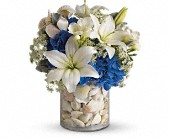 Everything's Beachy by Teleflora in Sugar Land TX, First Colony Florist & Gifts