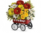 Baby's Wow Wagon by Teleflora - Boy in Elgin IL, Town & Country Gardens, Inc.