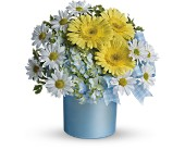 Teleflora's Once Upon a Daisy in Nationwide MI, Wesley Berry Florist, Inc.