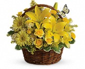 Raleigh Flowers - Basket Full of Wishes - Gingerbread House Florist