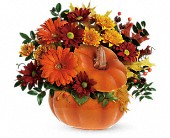 Teleflora's Country Pumpkin in Mount Morris MI, June's Floral Company & Fruit Bouquets
