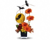 Teleflora's Boo-tiful Bats in Christiansburg VA, Gates Flowers & Gifts