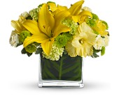 Oh Happy Day by Teleflora in Nationwide MI, Wesley Berry Florist, Inc.