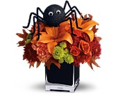 Teleflora's Spooky Sweet in Northport NY, The Flower Basket