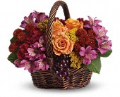 Sending Joy in Aston PA, Wise Originals Florists & Gifts