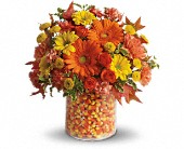 Teleflora's Candy Cornie in Baltimore MD, Raimondi's Flowers & Fruit Baskets