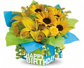 Teleflora's Sunny Birthday Present in Holladay UT, Brown Floral