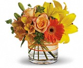 Madison Flowers - Sunny Siesta - A Daisy A Day Flowers &amp; Gifts, Inc.