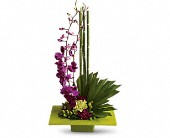 Santa Monica Flowers - Zen Artistry - Edelweiss Flower Boutique