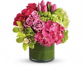 New Sensations in Mount Morris MI, June's Floral Company & Fruit Bouquets