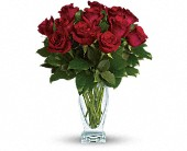 Teleflora's Rose Classique - Dozen Red Roses in Ammon ID, Petal Passion