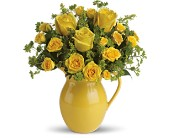 Teleflora's Sunny Day Pitcher of Roses in Burnaby BC, Lotus Flower & Terra Plants