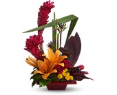 Teleflora's Tropical Bliss in Bradenton FL, Tropical Interiors Florist