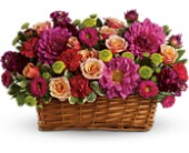 Burst of Beauty Basket in St Augustine FL, Flower Works