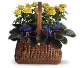 Garden To Go Basket in Gastonia NC, Fine And Fancy Flowers