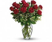 Hialeah Flowers - Always on My Mind - Long Stemmed Red Roses - Bella-Flor-Flowers