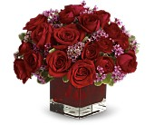Never Let Go by Teleflora - 18 Red Roses in Burnaby BC, Lotus Flower & Terra Plants