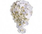 Style and Grace Bouquet in Corpus Christi, Texas, Tubbs of Flowers
