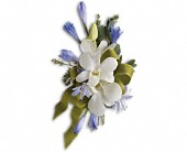Blue and White Elegance Corsage in Chesapeake VA, Greenbrier Florist
