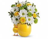 My Little Chickadee by Teleflora in Flower Delivery Express MI, Flower Delivery Express
