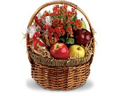 Whitehouse Flowers - Health Nut Basket - Flowers By Lou Ann