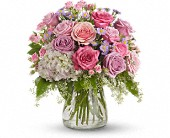 Your Light Shines in Thornhill, Ontario, Orchid Florist