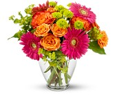 Brier Flowers - End of the Rainbow - Peter's Flowers