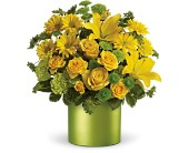 Teleflora's Say It With Sunshine in Houston TX, Clear Lake Flowers & Gifts