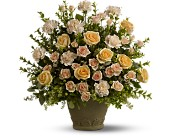 Teleflora's Rose Remembrance in Hollywood FL, Al's Florist & Gifts