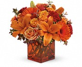 Teleflora's Sunrise Sunset DX, picture