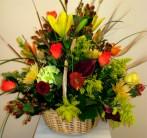 East Naples Flowers - Plantation Fall Basket - Gene's 5th Ave. Florist