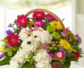 a-DOG-able� in a Basket in Colorado Springs CO, Sandy's Flowers & Gifts