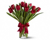 Radiantly Red Tulips in Etobicoke ON, La Rose Florist