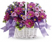 Daisy Daydreams in Florissant MO, Bloomers Florist & Gifts
