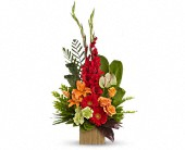 Teleflora's Beautiful Embrace Bouquet in Lawrence, Kansas, Owens Flower Shop Inc.