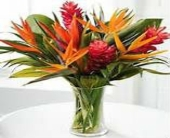 large tropical arrangment in Bismarck ND, Dutch Mill Florist, Inc.