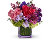Exquisite Beauty by Teleflora in Lawrence, Kansas, Englewood Florist